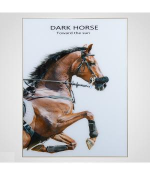 """ПАННО Интерьерное Панно """"The Dark Horse"""" 80х60 см"""